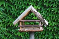 Vogelzufuhr Lizenzfreies Stockbild