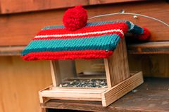 Vogelzufuhr mit einer woolen Geleetaschenkappe Winterdekoration stockbilder