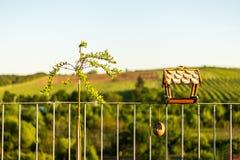 Vogelzufuhr mit grünem Naturhintergrund Lizenzfreies Stockfoto