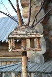 Vogelzufuhr von den Birkenzweigen stockfotos