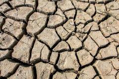 Озеро Vogrscek Droughted стоковое изображение rf