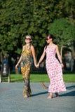 Vogue Royalty Free Stock Photo