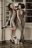 Vogue style photo of a two fashion ladies Royalty Free Stock Images