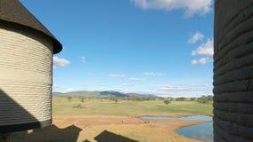 Voi, Кения, около июнь 2018 - красочный ландшафт на удобной ложе видеоматериал