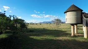 Voi Kenya, circa Juni 2018 - färgrikt landskap på den bekväma logen arkivfilmer