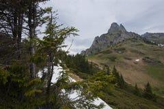 Voie à la montagne Photo libre de droits