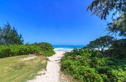 Voie à la plage Image stock
