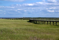 Voie au-dessus du marais Photographie stock libre de droits