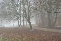 voie brumeuse Image stock