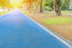 Voie courante en parc public bleu de couverture en caoutchouc de coureur pour l'exercice pulsant photo stock