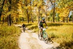 Voie d'équitation de cycliste de vélo de montagne au jour ensoleillé Photographie stock