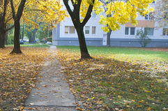 Voie 4 d'automne Images libres de droits