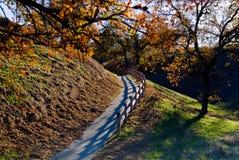 Voie d'automne avec la frontière de sécurité en bois Photos libres de droits