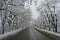 Voie d'hiver Image libre de droits
