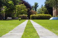 Voie dans l'herbe Photo libre de droits