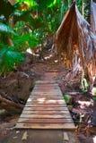 Voie dans la jungle, Vallee de Mai, Seychelles photographie stock