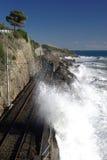 Voie de chemin de fer côtière image stock