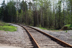 Voie de chemin de fer dans les bois Photographie stock libre de droits