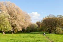 Voie de chemin de pré par le cadre de forêt d'automne Image stock
