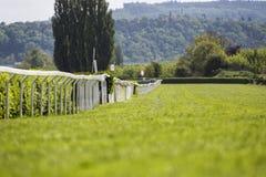 Voie de course vide pour des chevaux, fond brouillé Photographie stock libre de droits