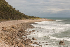 Voie de Heaphy en parc national de Kahurangi Photos libres de droits