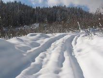 Voie de l'hiver Images libres de droits