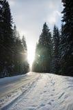 Voie de neige images libres de droits