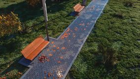 Voie de parc d'automne avec les bancs vides à la soirée banque de vidéos