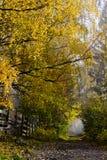 Voie de pays avec des arbres à feuilles caduques dans des couleurs d'automne Photographie stock libre de droits
