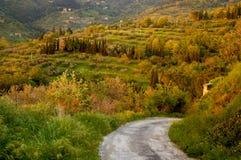 Voie de pays en Italie Photographie stock libre de droits