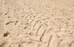 Voie de pneu sur le sable Photographie stock