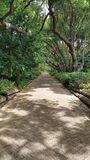 Voie de promenade par les jardins botaniques Photographie stock