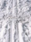 Voie de ski Images libres de droits