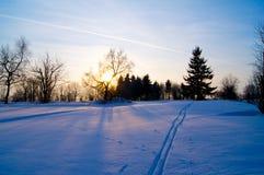 Voie de ski de fond le soir photographie stock