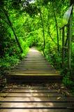 Voie en bois de chemin Image stock