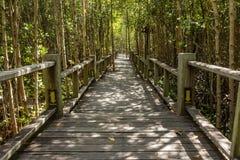 Voie en bois de pont Image libre de droits