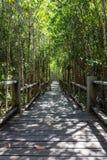 Voie en bois de pont Images stock