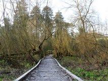 Voie en bois gel?e menant pour jeter un pont sur au-dessus des ?checs de rivi?re, Chorleywood photos libres de droits