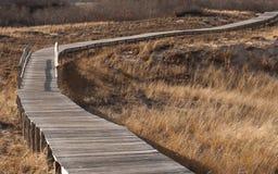 Voie en bois par les dunes de sable Image libre de droits