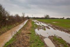 Voie en crue et profondément sillonnée de champ à côté d'une rivière gonflée photo stock