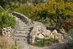 Voie en pierre à un escalier en pierre en parc photographie stock libre de droits