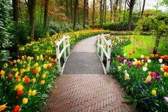 Voie en pierre de promenade dans le jardin Images libres de droits