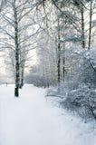 Voie en stationnement de l'hiver Image stock
