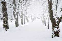 Voie en stationnement de l'hiver Photo libre de droits