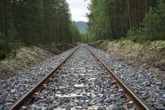 Voie ferrée par une forêt en Norvège Photos libres de droits