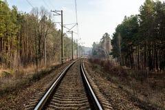 Voie ferroviaire entrant profondément dans la forêt image libre de droits