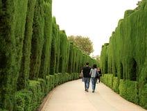 Voie incurvée dans les jardins célèbres d'Alhambra, Espagne images libres de droits