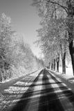 Voie noire et blanche de l'hiver Images stock