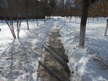 Voie urbaine dans la neige Photo libre de droits