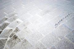 Voies d'oiseau sur la tuile carrée couverte de neige en parc en hiver photo stock